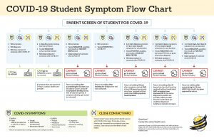 COVID Screening Flow Chart