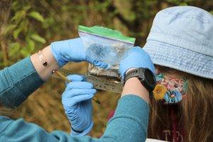 Students examine salamander
